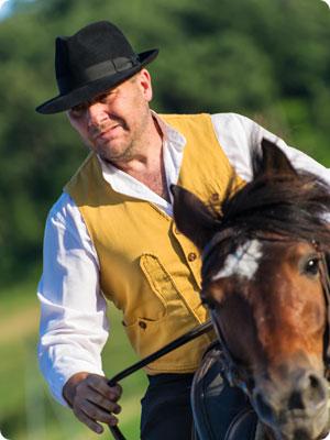 Horse Fever 2013