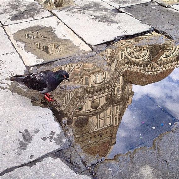 La Cupola del Brunelleschi riflessa e catturata dallo scatto di @franktoosinatra
