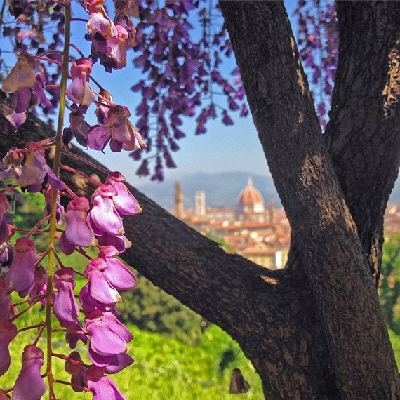 Spring invades with its colors and perfumes the garden of Villa Bardini - photo credit @visit_florence