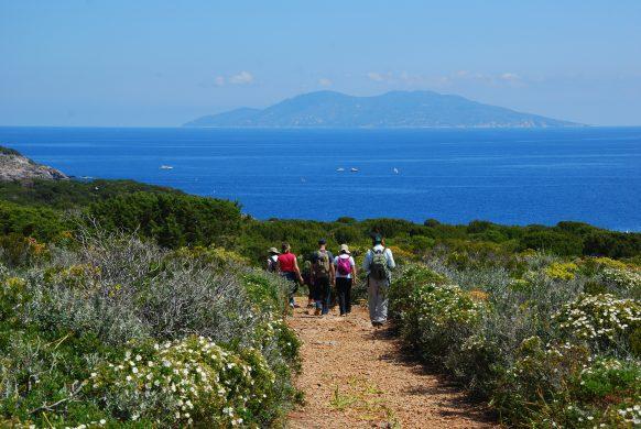 Giannutri, Visit a Tuscan Island
